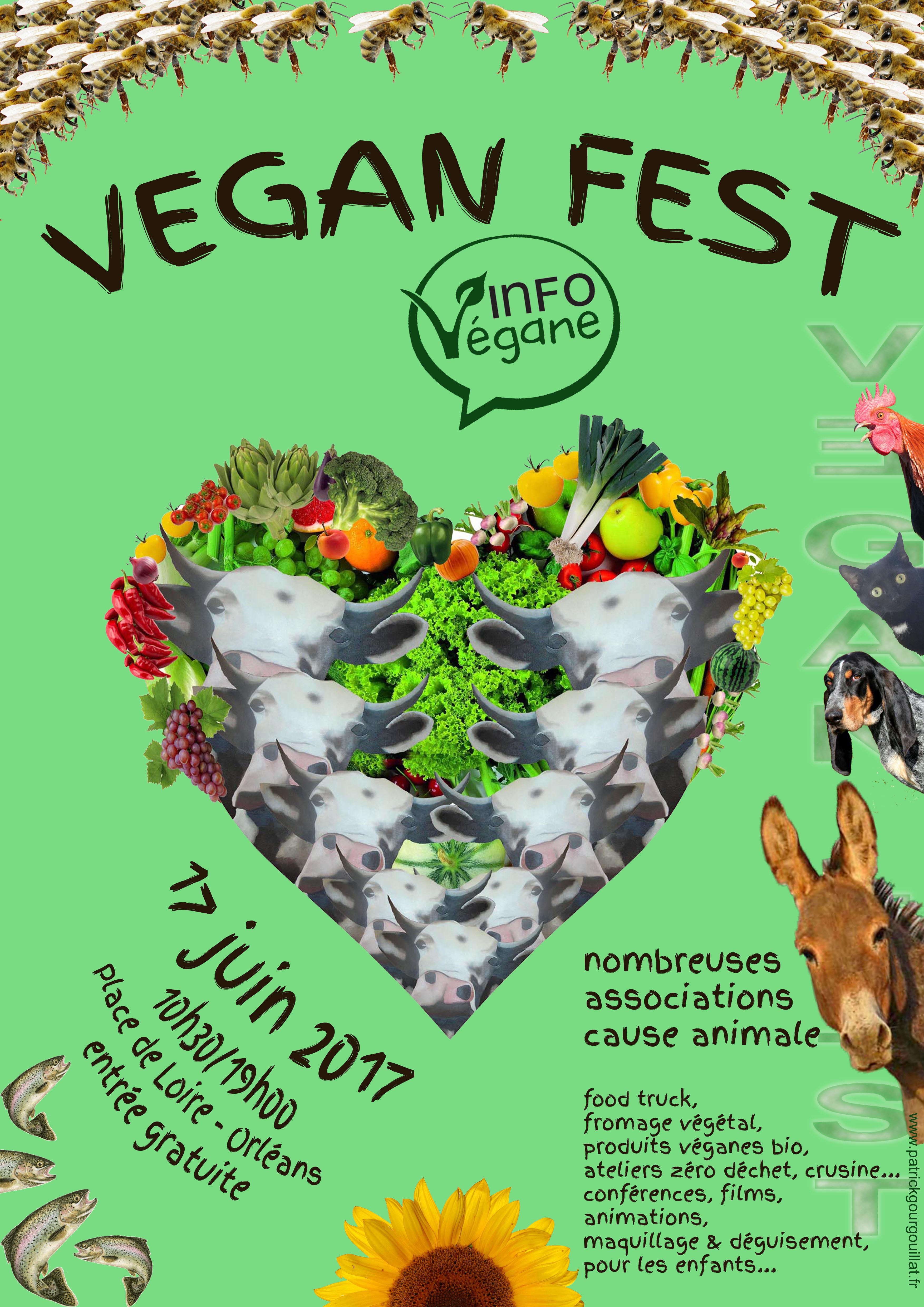 """Affiche réalisée pour la """"Vegan Fest"""" d'Orléans - patrick gourgouillat - 2017"""
