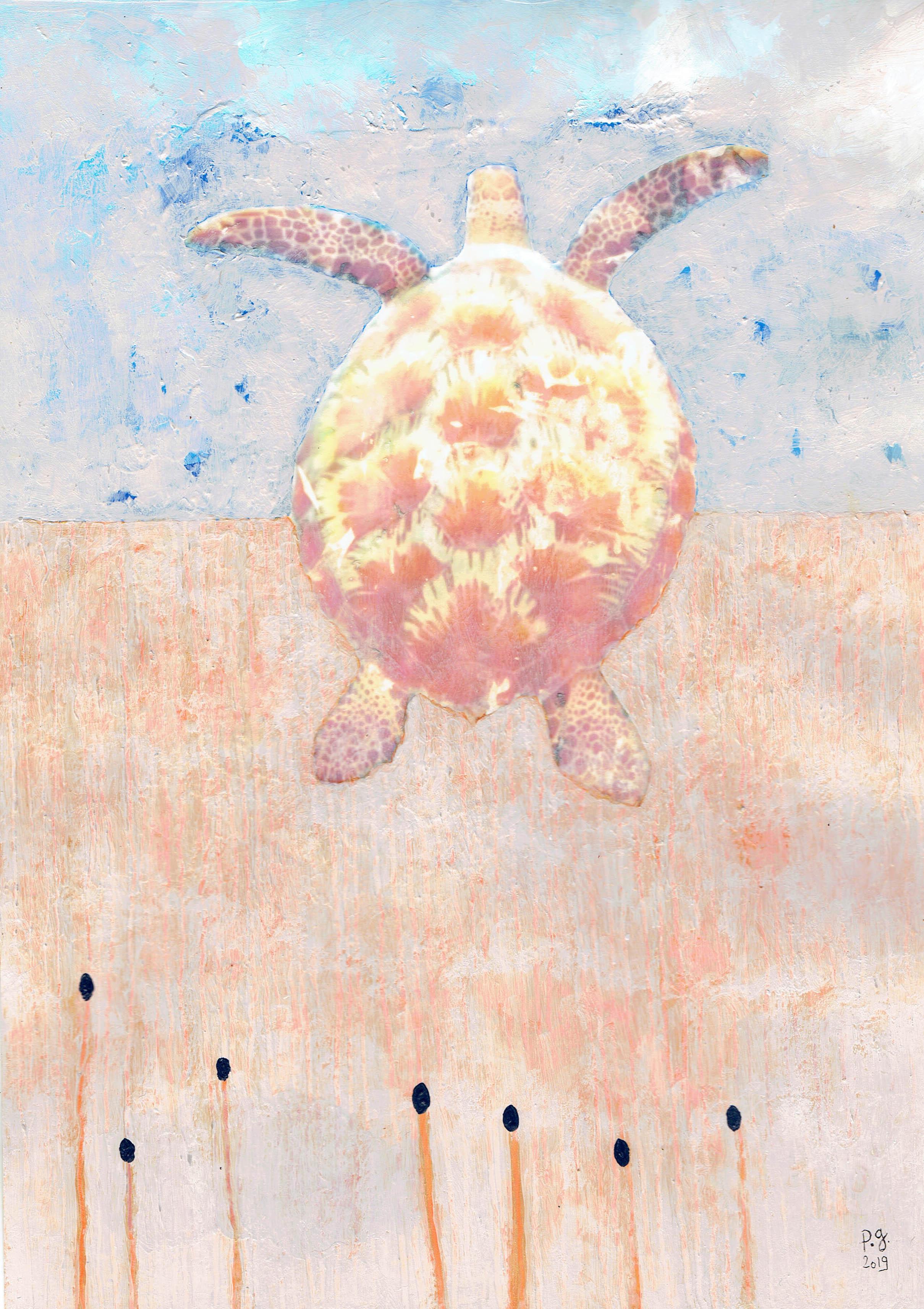 """Wandering"" - turtle - patrick gourgouillat"